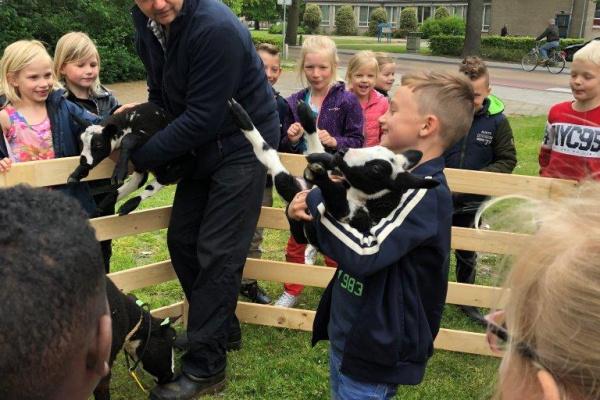 bezoek_boerderijdieren_(8).jpg