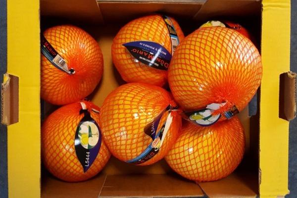 fruit_(6).jpg