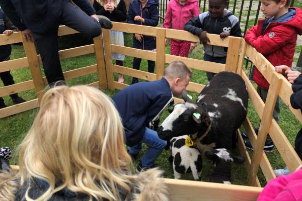 bezoek_boerderijdieren_(6).jpg